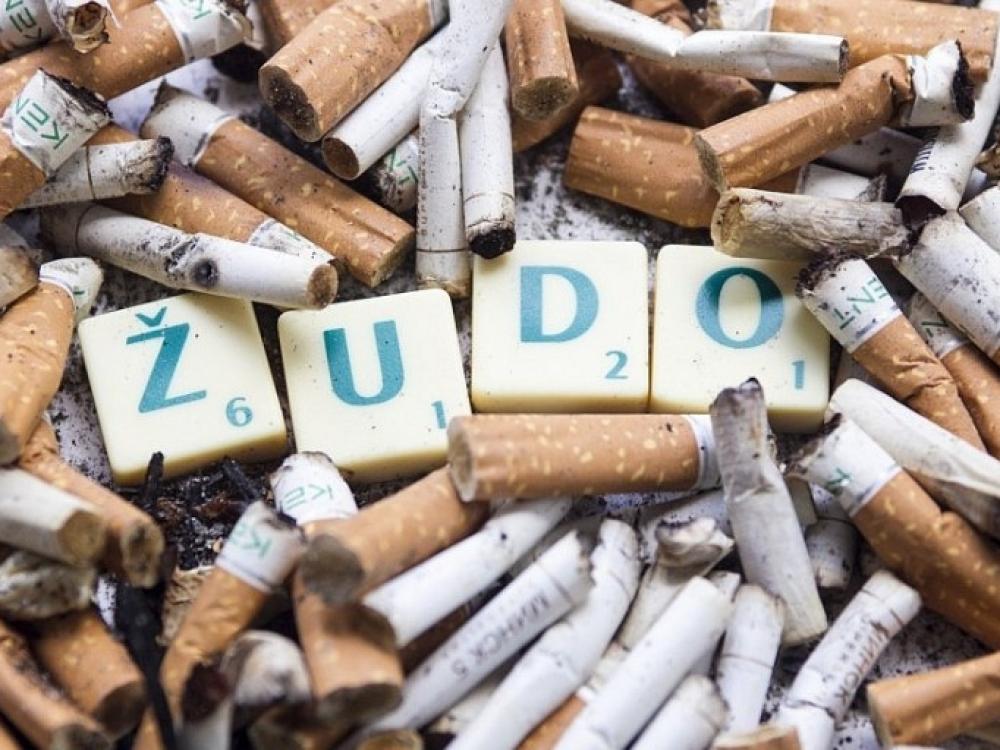 Šeimos gydytojai ieško būdų, kaip sumažinti rūkymo žalą