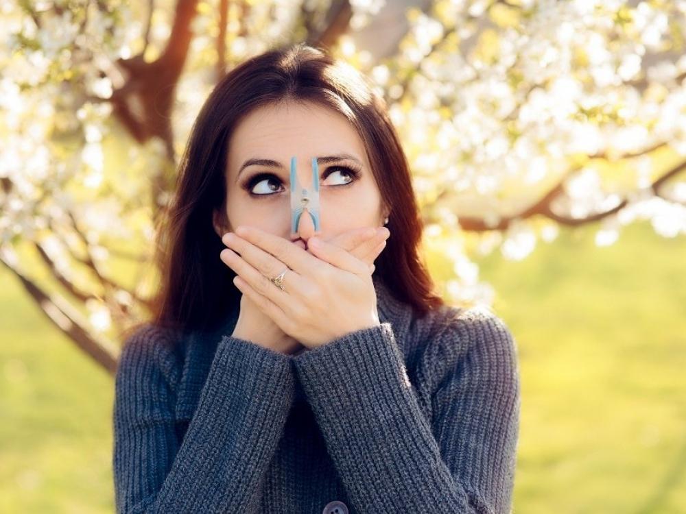 Alergijos žiedadulkėms sezonas ilgėja