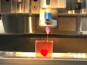 Izraelio mokslininkai pademonstravo pirmąją 3D spausdintuvu sukurtą širdį