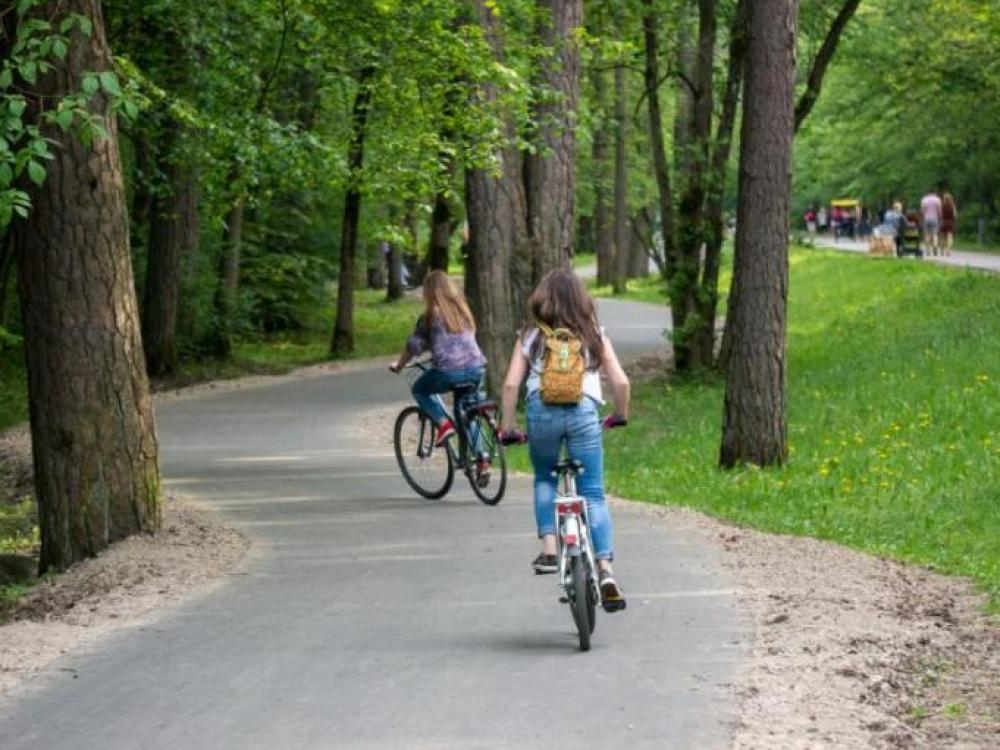 Vilniaus savivaldybė svarsto miesto parkuose pastatyti erkių gaudykles