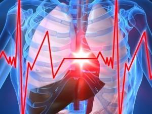 Transapikalinės mitralinio vožtuvo korekcijos modeliavimą patikrino klinikinėje praktikoje