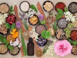 Žoleles, kurios pridės ir sveikatos, ir grožio