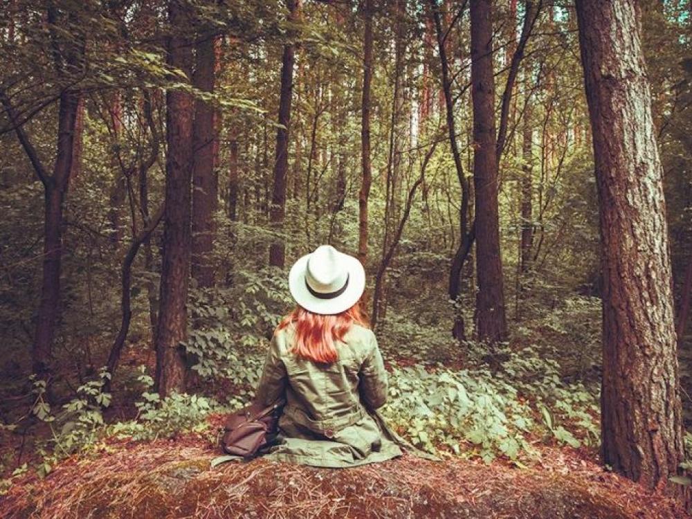 Miško maudynės. Kas tai?