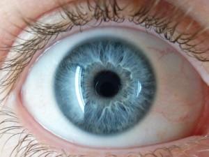 JAV Gynybos ministerija investuoja milijoną dolerių į akių transplantaciją
