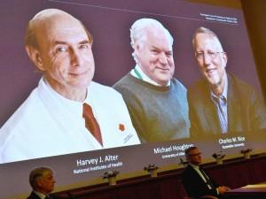 Nobelio medicinos premija paskirta virusologams H. Alteriui, Ch. Rice'ui ir M. Houghtonui