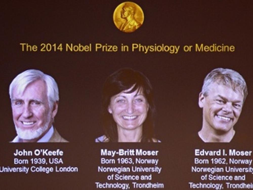 """Fiziologijos ir medicinos Nobelio premija – už """"įgimtos GPS sistemos"""" atradimą"""