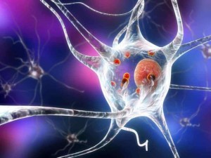 Sergantiems Parkinsono liga – nauja galimybė grįžti į gyvenimą