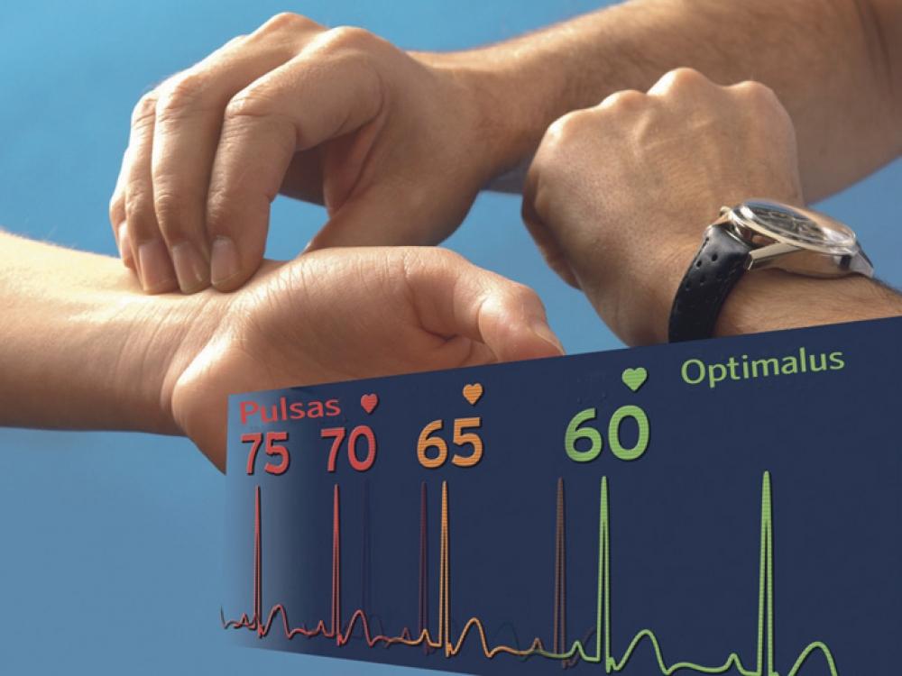 širdies susitraukimų dažnis per minutę reiškia sveikatą