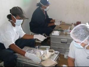 Madagaskare užfiksuotas buboninės maro formos protrūkis