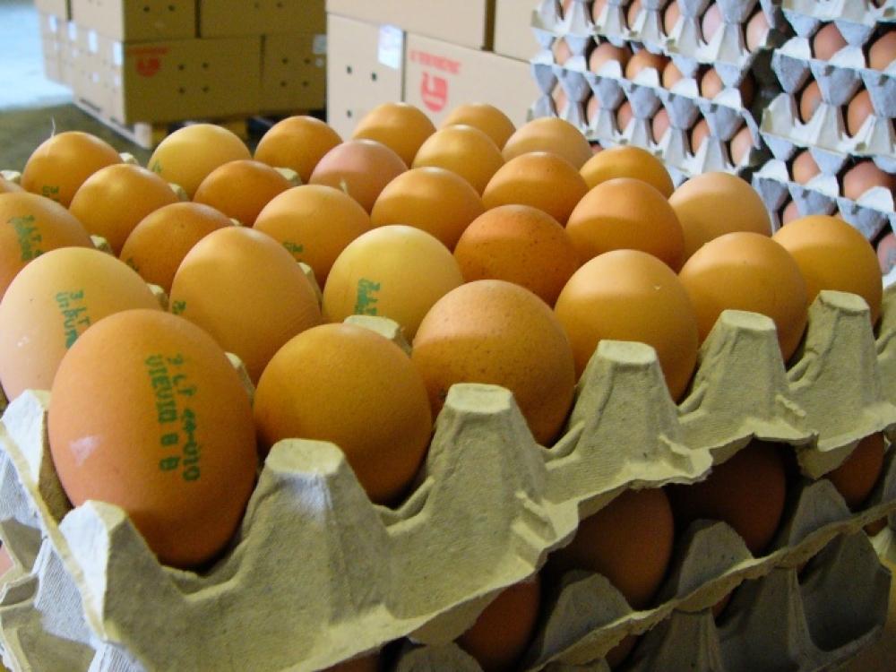 Ant šventinio stalo – kokybiški kiaušiniai