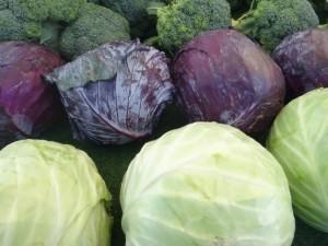 Kopūstas - viena daržovių, kuri išlaiko iki naujo derliaus