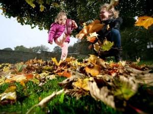 Žiedadulkių alergija užklumpa ir rudenį
