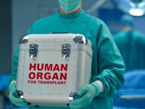 Transplantacijos laukiantysis dažnai klausia: kelintas esu eilėje?