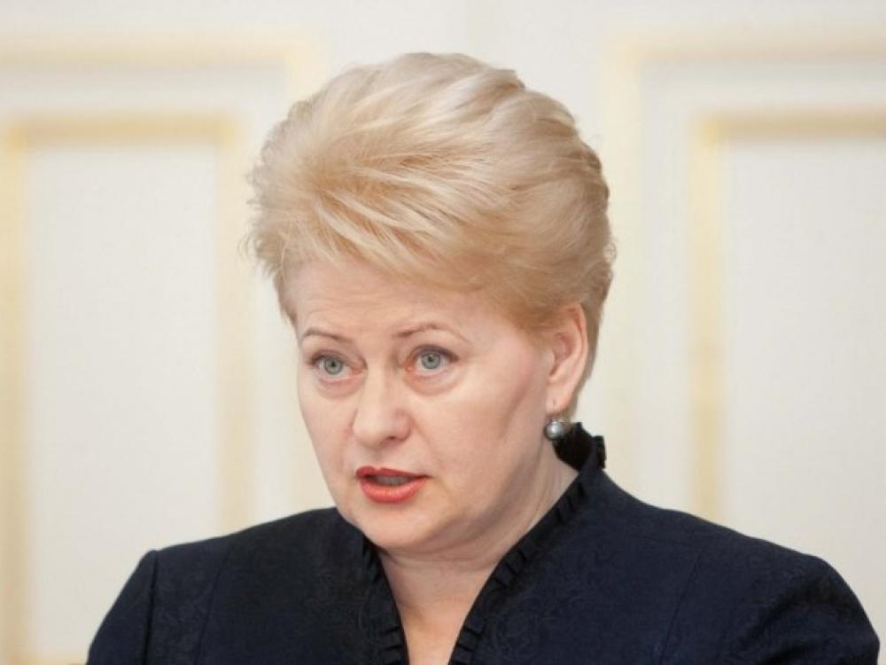 D.Grybauskaitė priimtas Baudžiamojo kodekso pataisas vadina gėdingomis