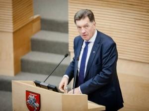 Vyriausybės ataskaita: didžiosios pergalės – neapibrėžtoje ateityje (Seimo narių komentarai)