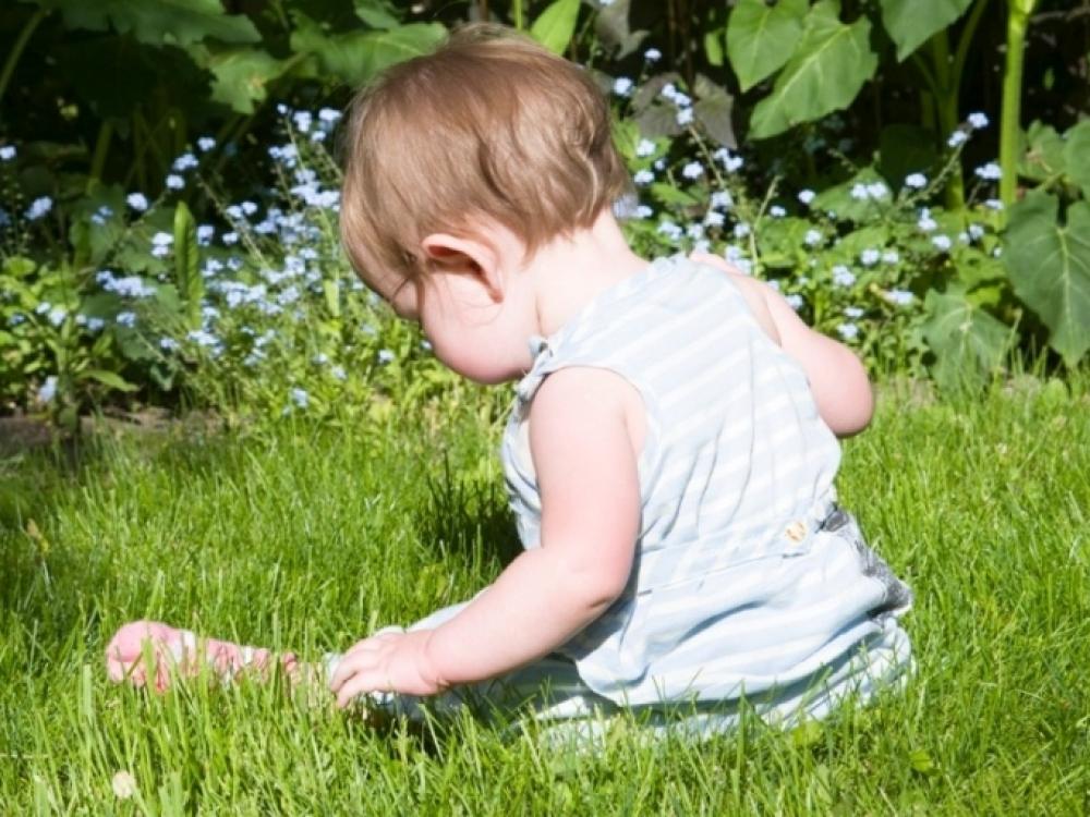 Mažyliai neišvengia nuodingų augalų