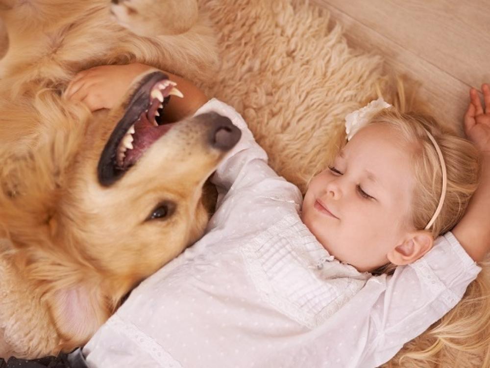 Kaniterapijos užsiėmimas – lyg psichologo konsultacija