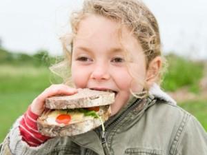Maisto pasirinkimą valdo ir genai