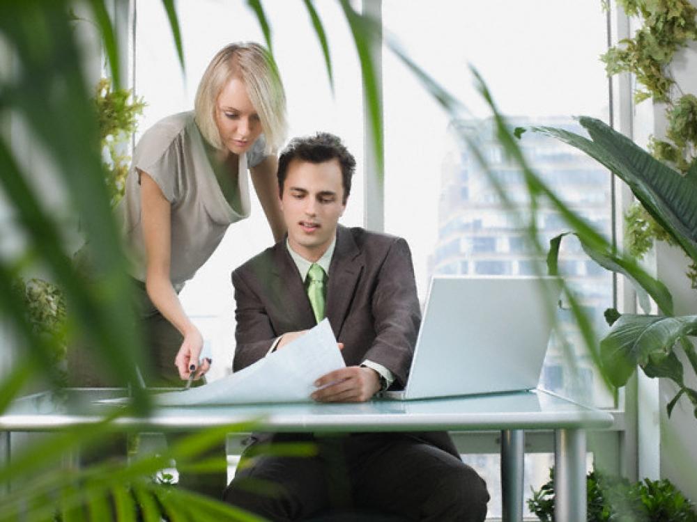 Mokslininkai: kuo biure daugiau gėlių, tuo sveikesni darbuotojai