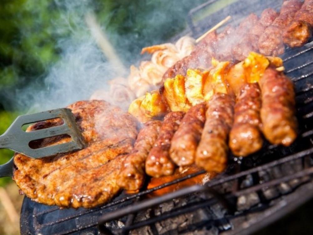Šiltuoju metų laiku išauga zoonozių pavojus