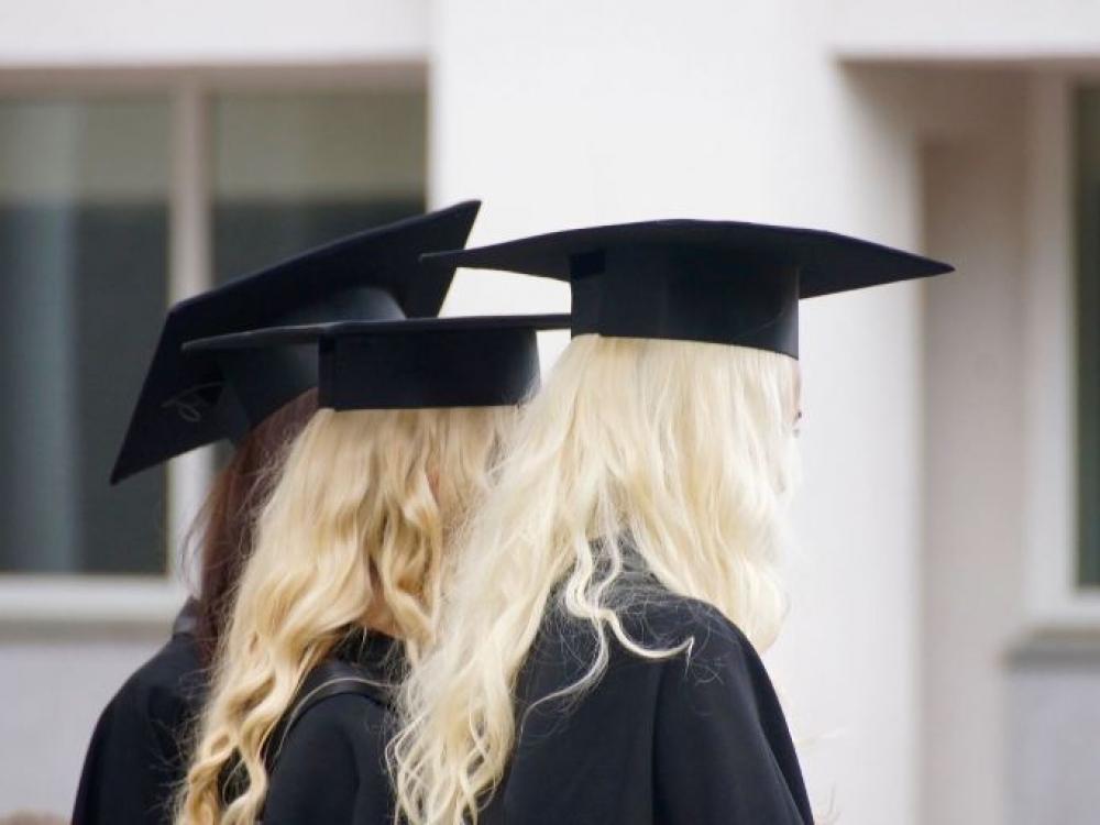 Universitetų mažės perpus