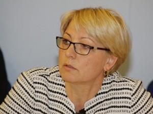 Išrinkti nauji trijų Seimo komitetų vadovai