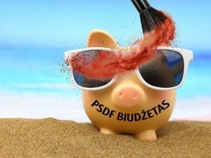 Kosmetiškai papudruotas biudžetas netinka nei opozicijai, nei medikams