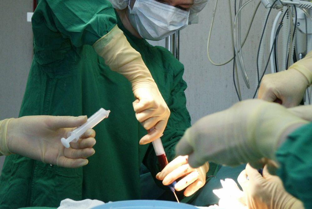 Kraujodaros kamieninių ląstelių transplantacijų istorijoje taško dar reikės palaukti