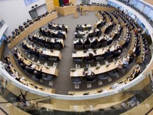 Seime kelią skinasi maisto kokybės komisijos išvados