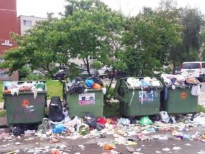 Vilniuje iškilo reali grėsmė žmonių sveikatai