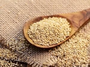 Liaupsės baltymų karalienei – kynvai
