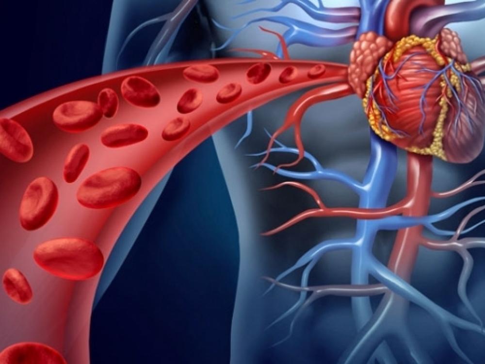 dieta sergant širdies ligomis ir hipertenzija