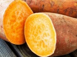 Bulvių giminaičiai - naudingieji batatai