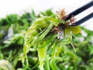 Jūros daržovės: ar jau įtraukėte jų į racioną?